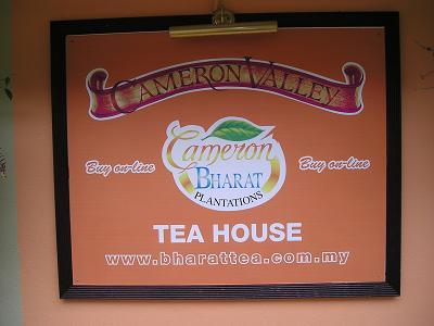 キャメロンハイランド 紅茶農園